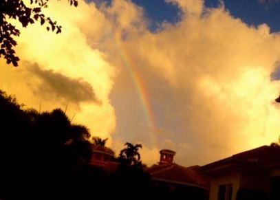rainbow - blog